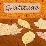 Thanksgiving Week Gratitude