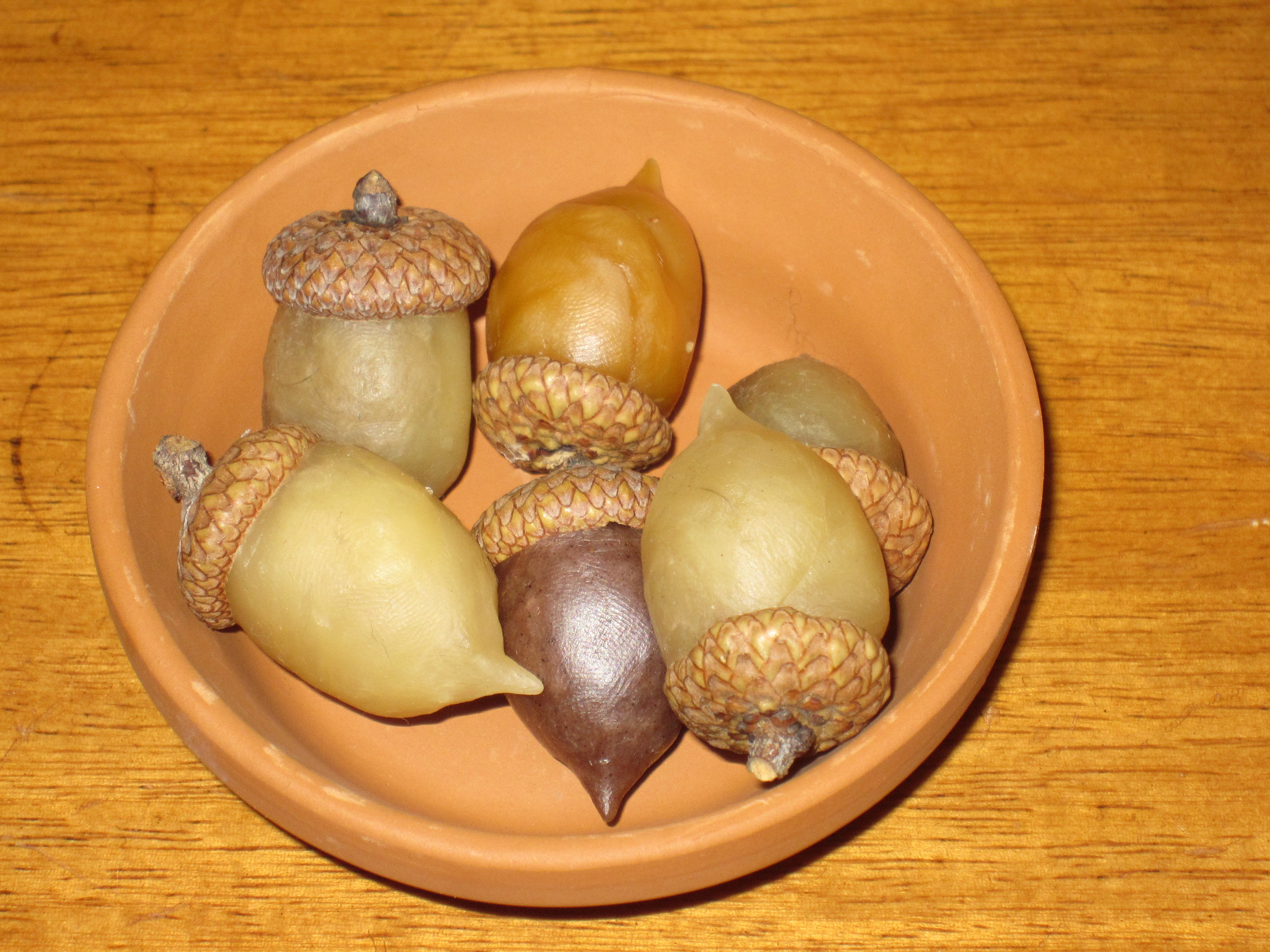Beeswax Acorns