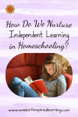 How Do We Nurture Independent Learnering in Homeschooling?