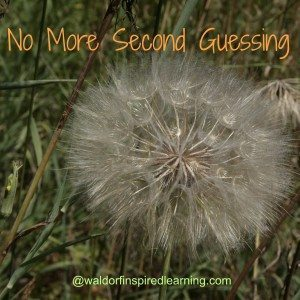 No More Second Guessing Your Homeschooling Decisions