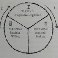 Waking, Sleeping, Dreaming