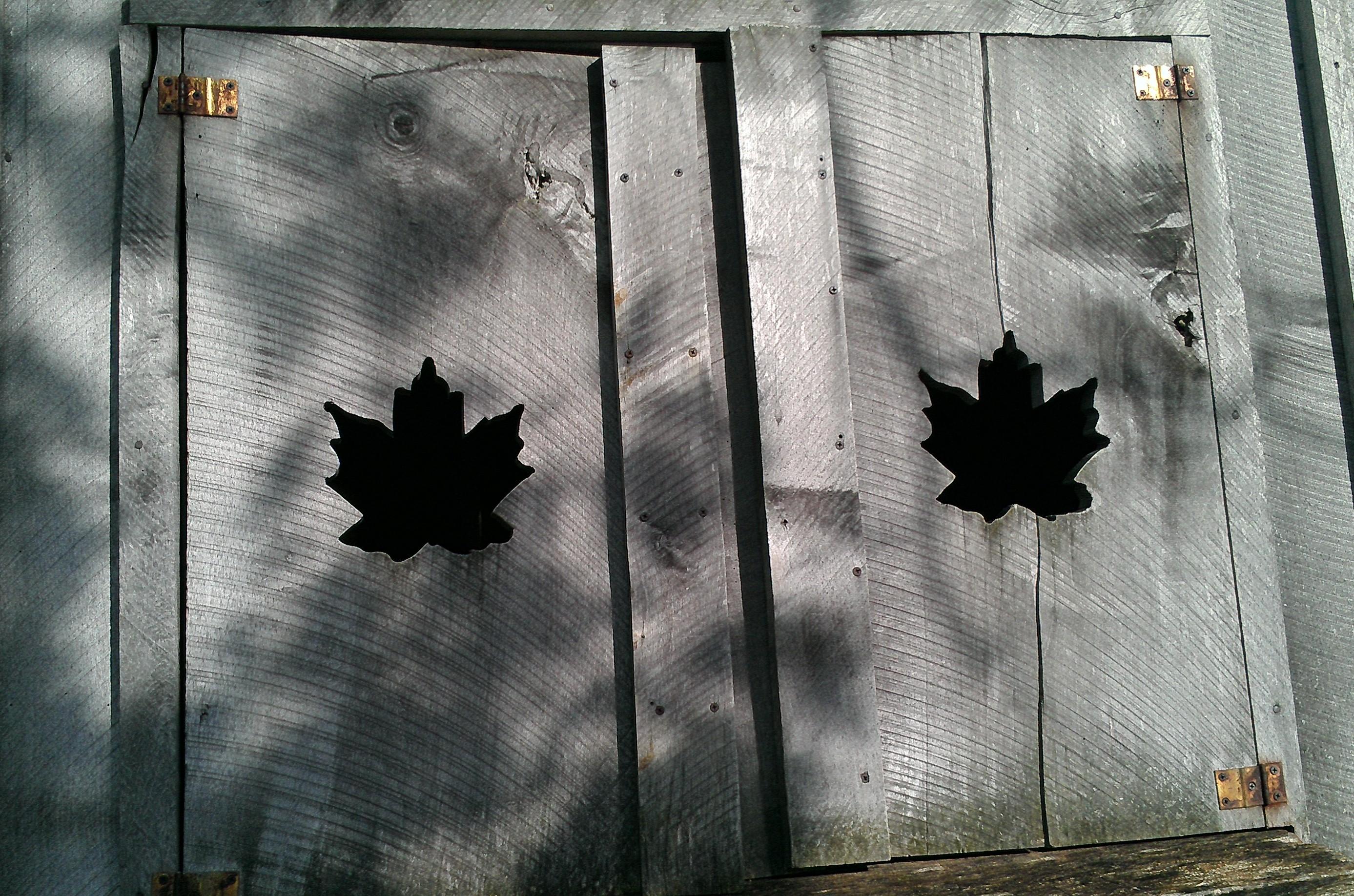 Maple Leaf Doors