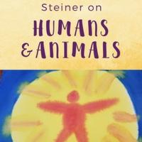Humans & Animals main lesson block