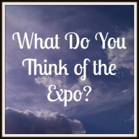 What Do You Think of the Expo?