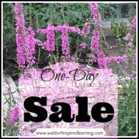 One Day Sale at Waldorf-Inspired Learning