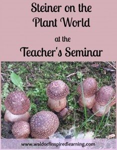 Steiner on Plant World