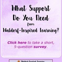 What Support Do You Need From Waldorf-Inspired Learning?
