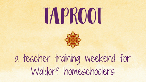 Taproot Teacher Training