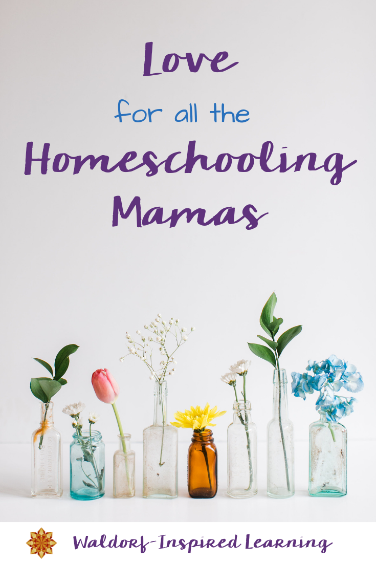 Love for all the Homeschooling Mamas