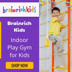 Indoor Play Gym for Kids