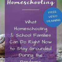 Homeschooling from Home
